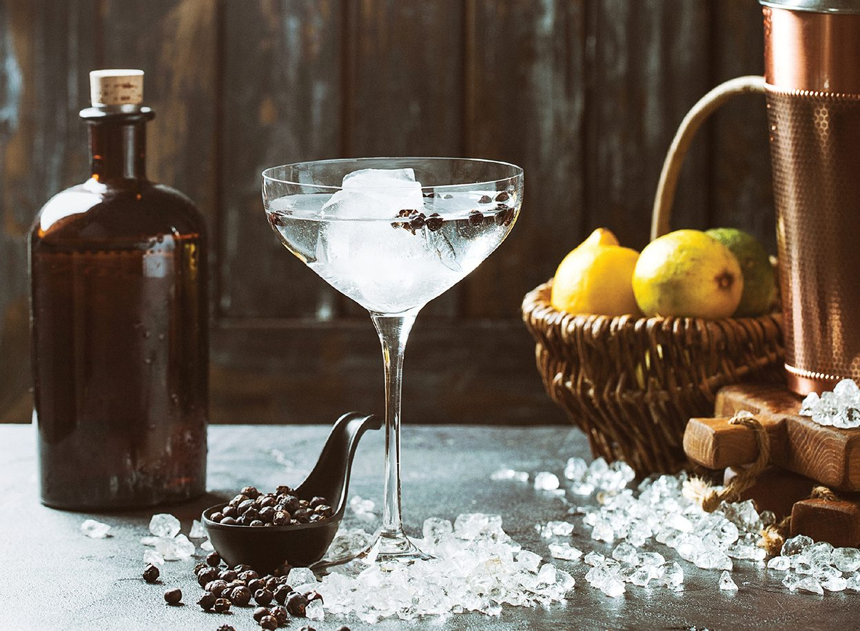 Craft Gin Making book
