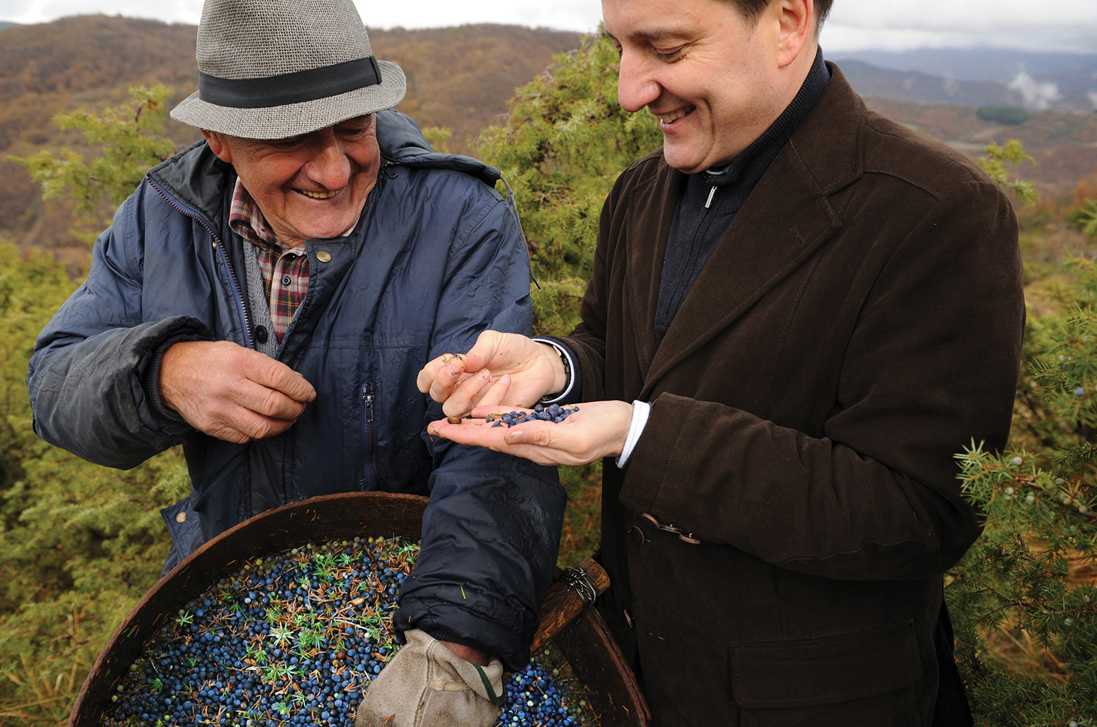 Ivano Tonutti master of botanicals at Bombay Sapphire with juniper farmer in Tuscany
